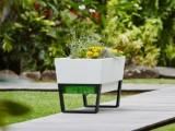 self watering mobile planters