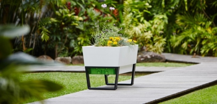 self watering mobile planters